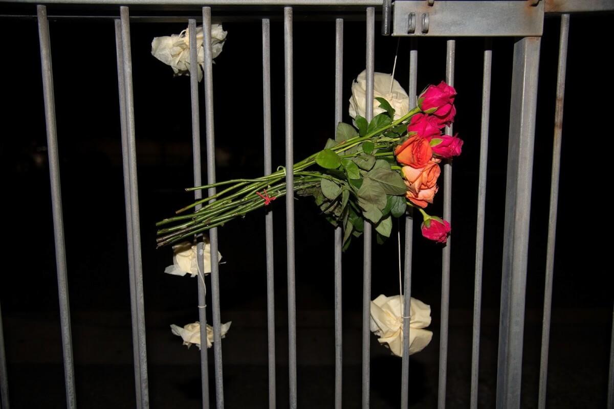 sub buzz 4597 1552685407 1 - Flores estão sendo distribuídas em Mesquitas pelo mundo todo após atentado