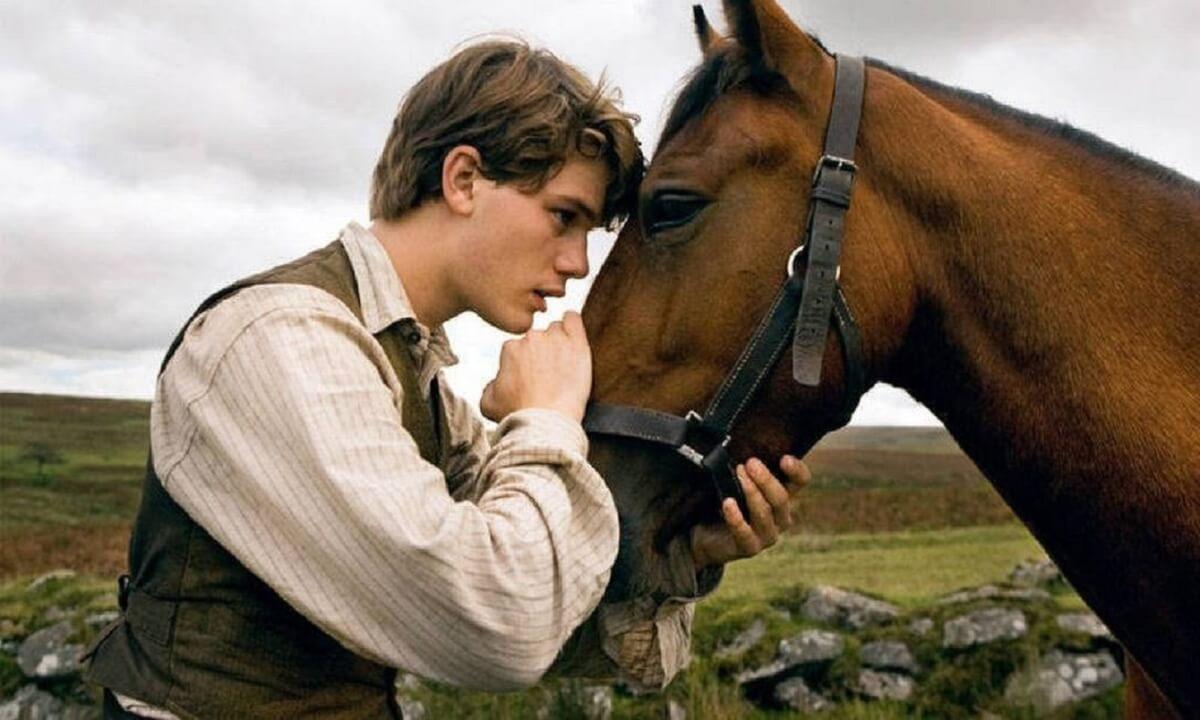 war horse movie image jeremy irvine 01 - 6 filmes para assistir em dias chuvosos que você vai amar