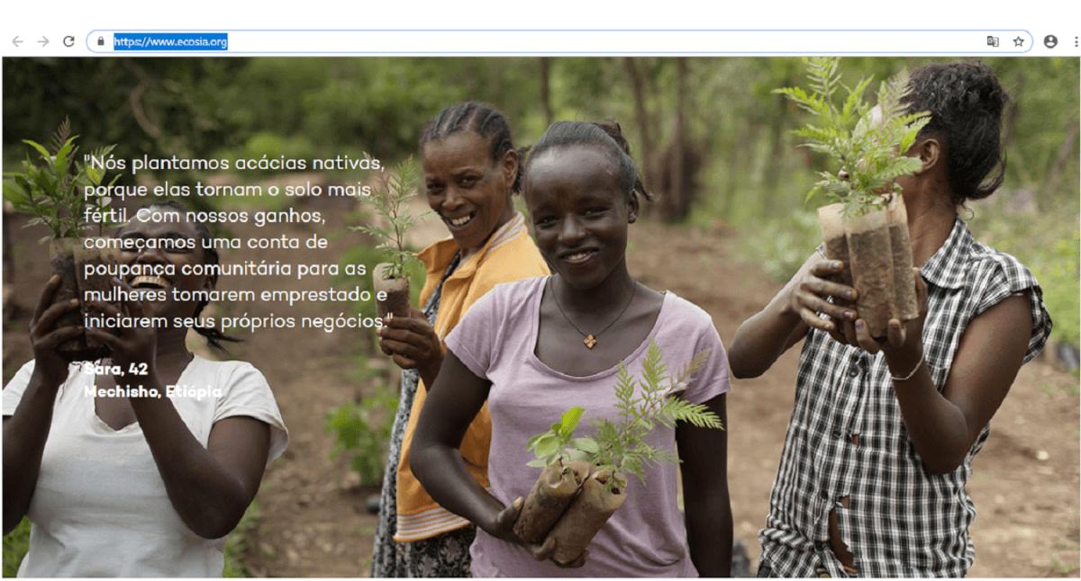 Sem título - Conheça o ECOSIA, um mecanismo de pesquisa que planta árvores!