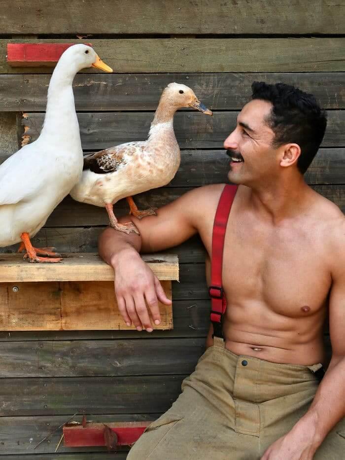 233 - Bombeiros australianos posam com animais para o calendário de caridade 2020 - haja fogo!