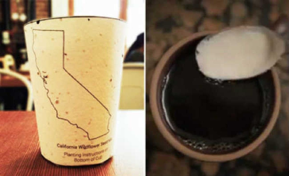 50 650 copo cafe 525 - Mc Donald's vai eliminar as tampas de plásticos das suas embalagens!