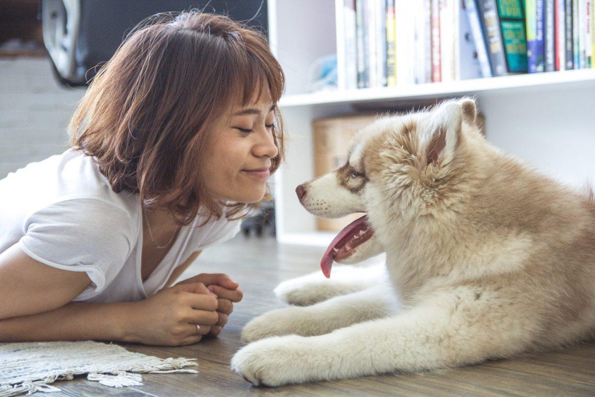 girl 1160441 1280 scaled - De acordo com estudo, algumas pessoas amam mais seus animais que outros humanos